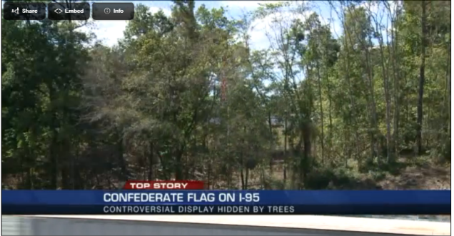 flag in the woods 10